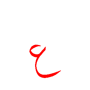shirin-abedini23i